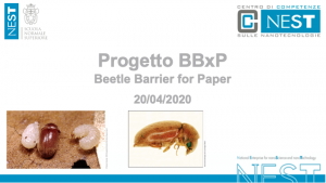 Progetto Beetle Barrier for Paper